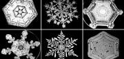 Wilson-Bentley-snow-800x511