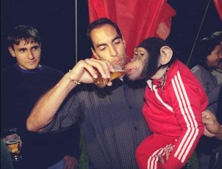 Edmundo scimmia